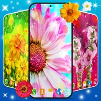 Flowers Live Wallpaper 🌻 Spring and Summer Themes on 9Apps