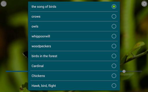 Birds Calls Sounds screenshot 8