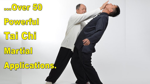 Tai Chi Martial Applications screenshot 3