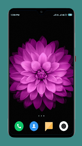 Flowers Wallpaper 4K 14 تصوير الشاشة