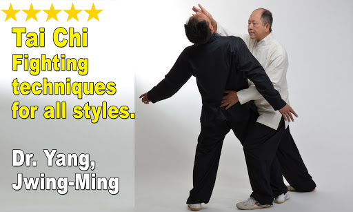Tai Chi Martial Applications screenshot 15