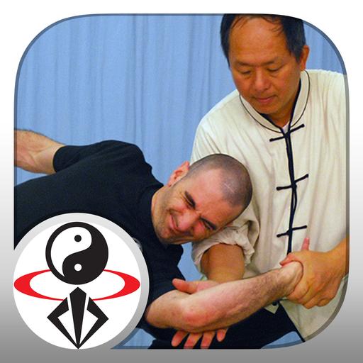 Tai Chi Martial Applications icon
