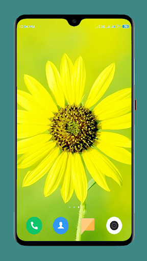 Flowers Wallpaper 4K 1 تصوير الشاشة