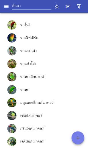 Parrots screenshot 1