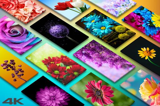 🌺 Flower Wallpapers - Colorful Flowers in HD & 4K 1 تصوير الشاشة