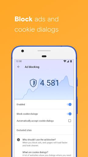 Opera browser beta screenshot 3