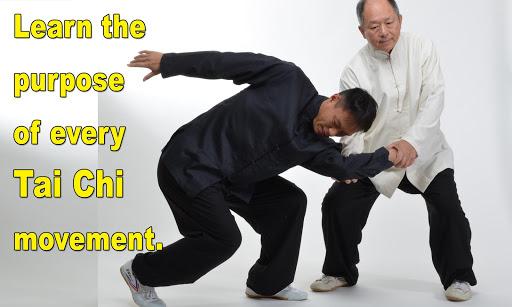 Tai Chi Martial Applications screenshot 14