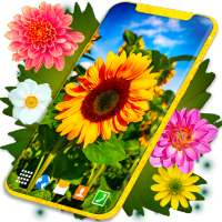 HD Summer Live Wallpaper 🌻 Flowers 4K Wallpapers on 9Apps