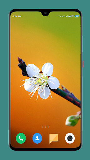Flowers Wallpaper 4K 16 تصوير الشاشة