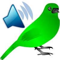 Birds Ruft Sounds on 9Apps