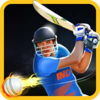 Cricket Champions on 9Apps