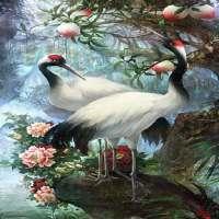 White Birds Live Wallpaper on 9Apps