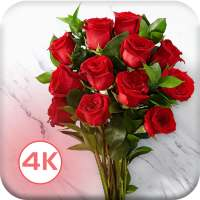HD Rose Flowers Live Wallpaper on 9Apps