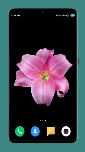 Flowers Wallpaper 4K 2 تصوير الشاشة
