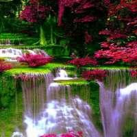 Waterfall Flowers LWP on 9Apps