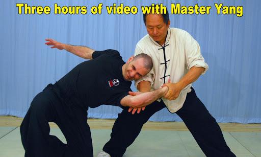 Tai Chi Martial Applications screenshot 11