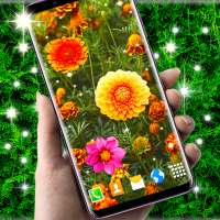 Autumn Flowers 4K Live Wallpaper ❤️ Forest Themes on 9Apps