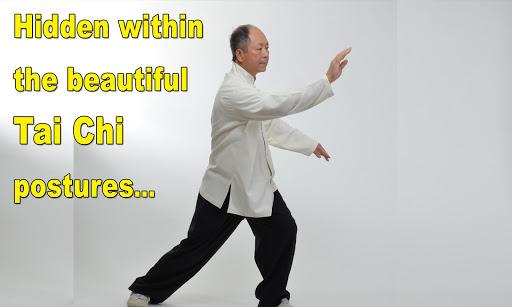 Tai Chi Martial Applications screenshot 12