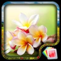 زهور خلفية متحركة on 9Apps