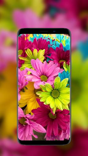 🌺 Flower Wallpapers - Colorful Flowers in HD & 4K 9 تصوير الشاشة