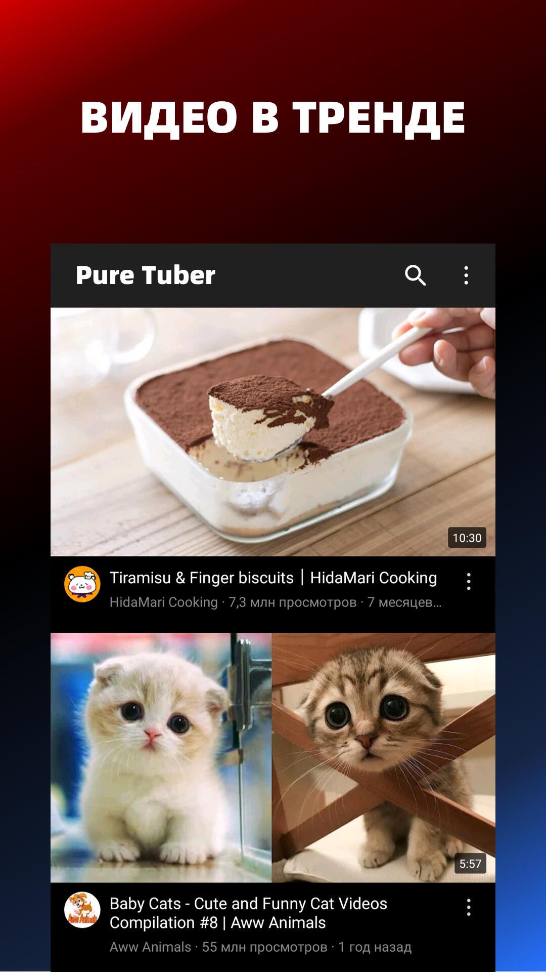 Pure Tuber - Блокировка рекламы видео, бесплатный Premium скриншот 6