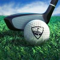 WGT Golf on APKTom