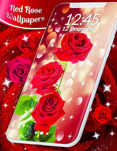 Red Rose Live Wallpaper 🌹 Flowers 4K Wallpapers screenshot 1