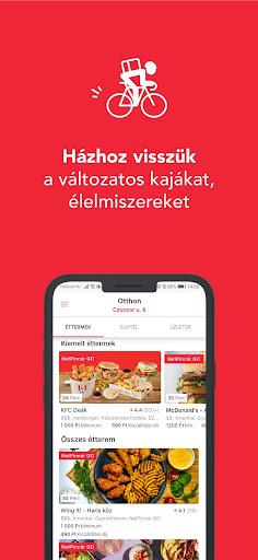 NetPincér screenshot 1