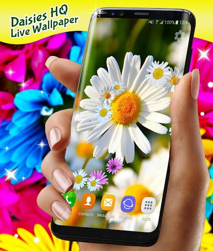 3D Daisy Live Wallpaper 🌼 Spring Field Themes screenshot 6