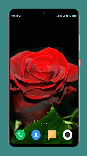 Flowers Wallpaper 4K 6 تصوير الشاشة