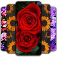 Flowers Wallpaper 🌷 💐 🌹 on 9Apps