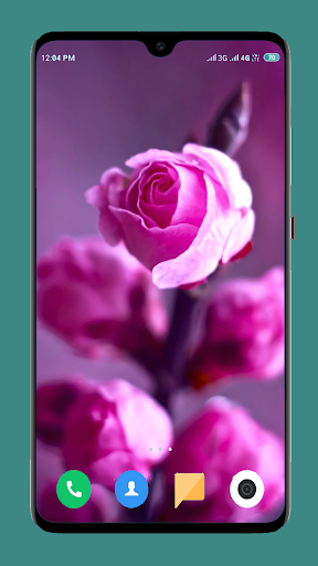 Flowers Wallpaper 4K 13 تصوير الشاشة