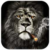 Cool Lion Lock Screen for You on 9Apps