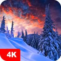 Winter Wallpapers 4K on 9Apps