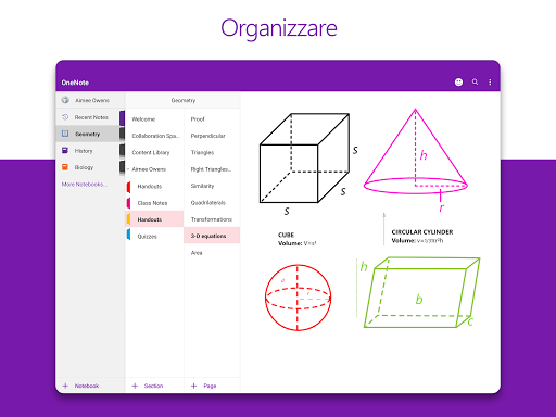 Microsoft OneNote: salva idee e organizza note screenshot 7