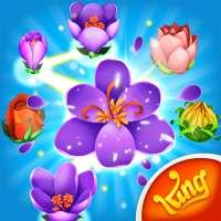 Blossom Blast Saga on 9Apps
