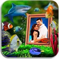 Photo Aquarium Live Wallpaper on 9Apps