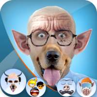 Funny Face Photo Editor Face Warp - Face Changer on 9Apps
