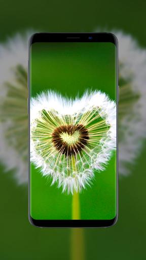 🌺 Flower Wallpapers - Colorful Flowers in HD & 4K 7 تصوير الشاشة