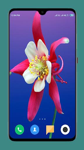 Flowers Wallpaper 4K 12 تصوير الشاشة