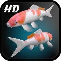 Koi Fish Live Wallpaper 3D on 9Apps