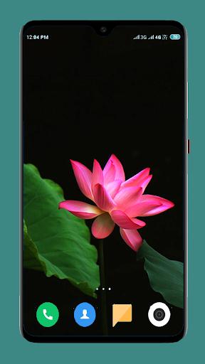 Flowers Wallpaper 4K 5 تصوير الشاشة