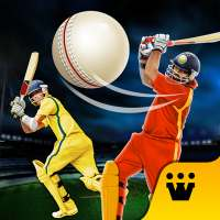 World T20 Cricket Champs 2020 on 9Apps
