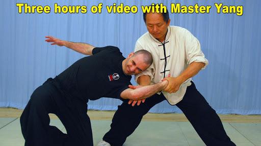 Tai Chi Martial Applications screenshot 1