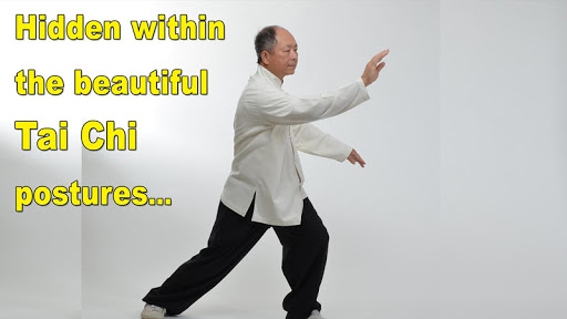 Tai Chi Martial Applications screenshot 2