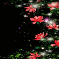 Red Flowers Magic LWP on 9Apps