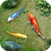 Water Koi Fish Pond LWP on 9Apps