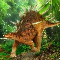 Kentrosaurus Simulator on 9Apps