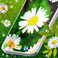 3D Daisy Live Wallpaper 🌼 Spring Field Themes on 9Apps