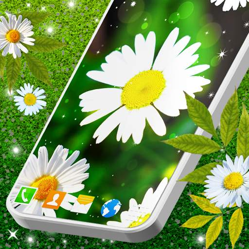 3D Daisy Live Wallpaper 🌼 Spring Field Themes